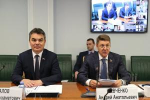 Практику реализации инициативных проектов обсудили в Совете Федерации